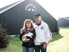 Wéér bezoek van dierenactivisten, dat vreet aan konijnenfokker Henk Oonk: 'Ik trilde helemaal'