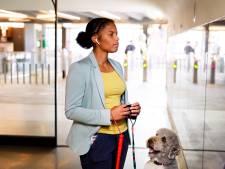 Eindhovense afstandsbediening voor blinden moet naar Amerika