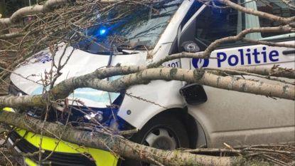 """Politiecombi bedolven onder takken: """"Op weg naar omgevallen boom"""""""