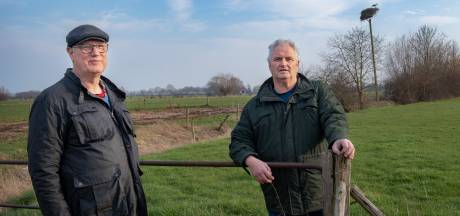 Invasie van ooievaars in polderdorpen dankzij nestenbouwers Kees en Johan: 'Ze zijn weer allemaal bezet!'