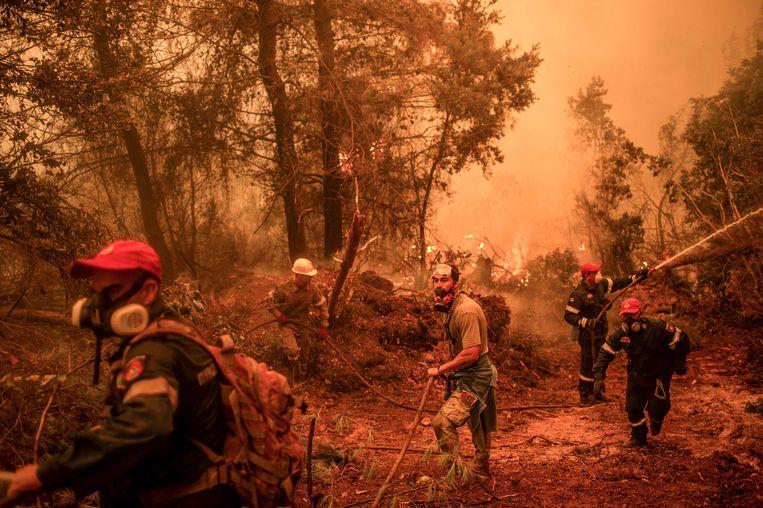 Brandweerlieden proberen een bosbrand te blussen op het Griekse eiland Evia.  Beeld AFP