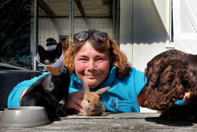 Cora Rikkelman van Dierenasiel Gorinchem. Van de gevonden kitten moest het pootje geamputeerd worden.