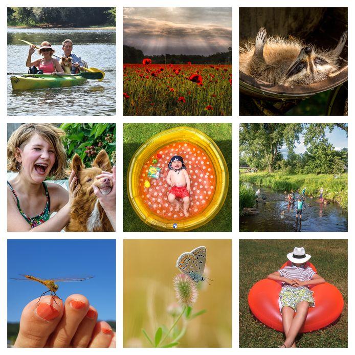 Een selectie van zomerse foto's die ingezonden zijn voor de derde week van ED Zomerfoto 2020.
