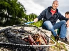 In dit Arnhemse park krioelt het van de kreeften, en je kunt ze nog eten ook
