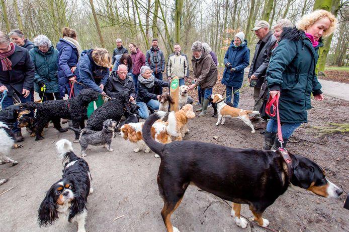 Hondenbezitters in een van de Schiedamse parken.
