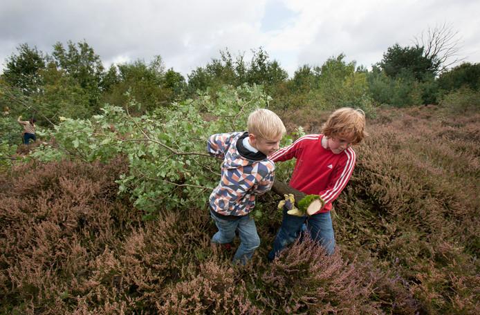 Basisschoolleerlingen helpen in 2011 mee met opschonen van de Eder Heide.