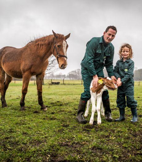 'Groen' boeren levert koeienboer geld en de natuur winst op; 'Belonen in plaats van straffen'