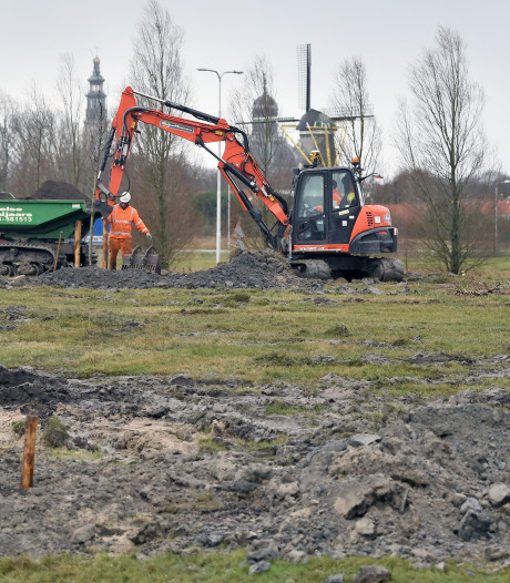 Rijkswaterstaat vervangt dode en zieke bomen langs N57 op Walcheren