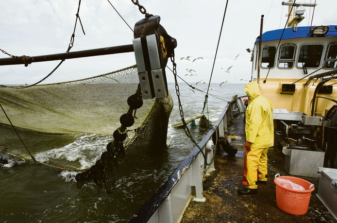 Garnalenvisser zet zijn netten uit (archief).