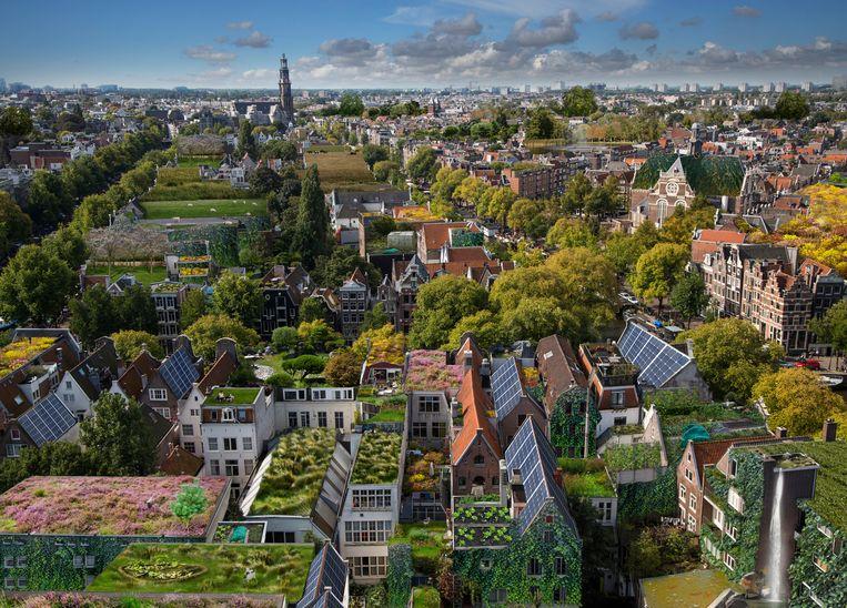 Groene daken, tuinen en zonnepanelen in Amsterdam, zo stelt het initiatief Rooftop Revolution het zich voor.  Beeld Alice Wielinga/Rooftop Revolution