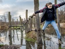Vijf keer klimmen en slingeren: fijne speelbossen in Nederland
