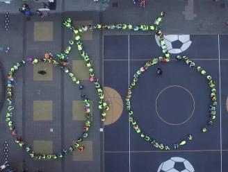 Maandag starten de werken: betonnen fietspad in Ten Bogaerdelaan krijgt asfaltlaag
