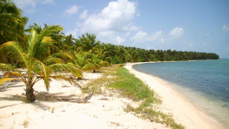 Het paradijslijke Ambergris Caye. Beeld thinkstock