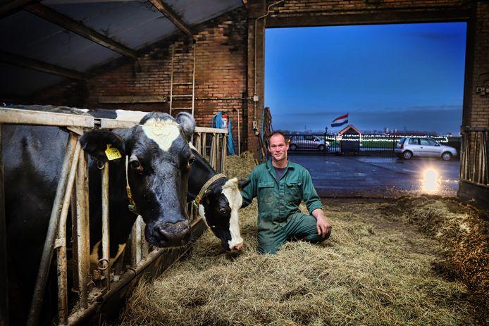 Bij boer Cees Biesheuvel in Geervliet mochten auto's zaterdagavond niet meer door de stal rijden.