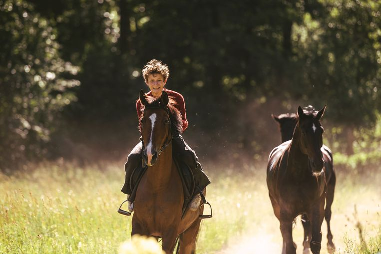 'Out Stealing Horses' gaat over veel dingen tegelijk, zonder ze uit te spreken. Beeld Film depot