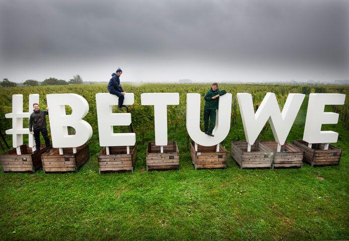#BETUWE staat levensgrot her en der in het gebied, hier in Erichem bij Betuws Wijndomein, om het streekeigene te benadrukken`