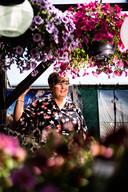 """José van der Meijden tussen de bloemen. ,,Het is hier op mijn dakterras net de Intratuin."""""""