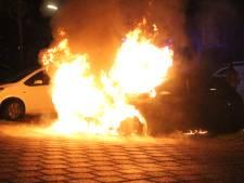 Auto gaat in vlammen op aan de Frits Diepenlaan