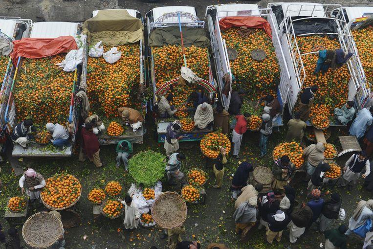 Voor de verdeling van eerste levensbehoeften als voedsel werkt de markt prima, betoogde Adam Smith. Beeld AFP