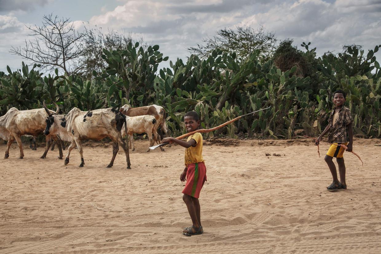 Kinderen in het zuidoosten van Madagascar. Daar heerst vaker een voedseltekort door extreme droogte. De klimaatverandering zou dit fenomeen enkel verergeren. Beeld AFP