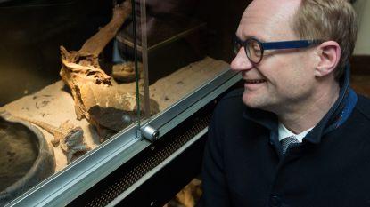 """Positieve lijst laat 422 reptielsoorten toe als huisdier: """"Gedaan met krokodillen in bad"""""""