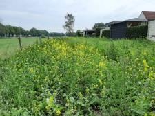 Geen compromis over afsluiting van wandelpad in Kruidenwijk: 'Ze staan nergens voor open'