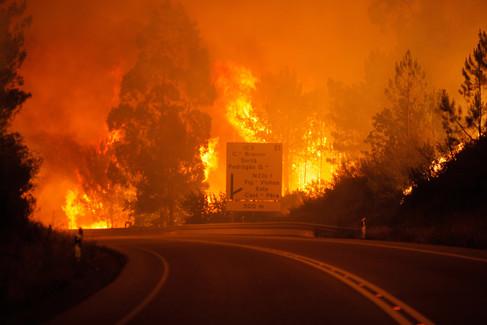 Foto van IN BEELD: Portugal getroffen door zwaarste bosbranden in jaren