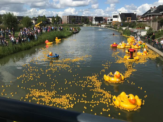 De badeendjesrace in Zaltbommel bracht ruim 10.000 euro op.