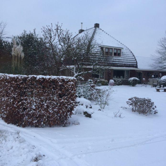 Winter in Herveld.