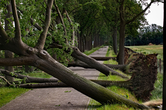 Juni: Stormschade aan de Kaweiseweg in Deurne.
