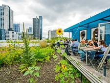 Slim Rotterdams waterdak is een hit in binnen- en buitenland