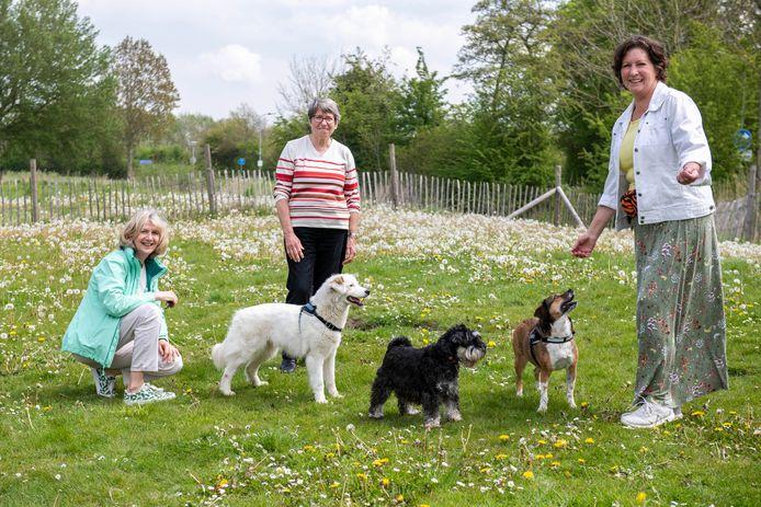 Vlnr: Mirjam Luijendijk, Riet Rademaker en initiatiefneemster voor de opknapbeurt Trees Janssens op het hondenspeelveld aan de Prooijenseweg met de honden Ami, Jelle en Olijfje.