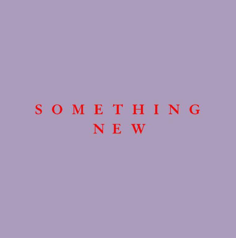 Goose - Something New Beeld rv