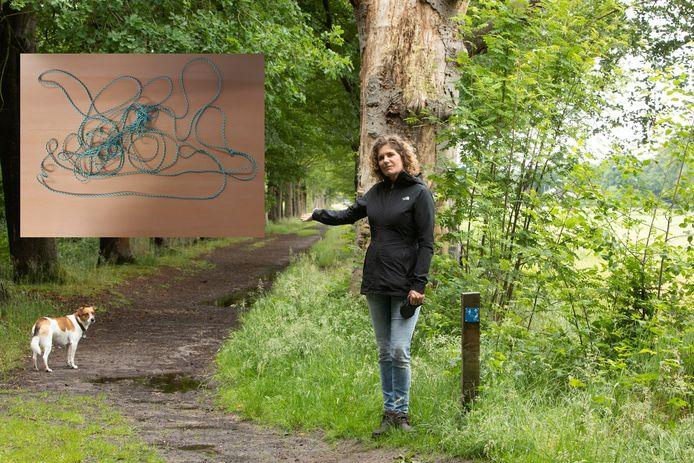 Lot van den Broek uit Soest zag zaterdagochtend in het bos bij Kasteel Groeneveld in Baarn een over dit pad gespannen nylon koord.