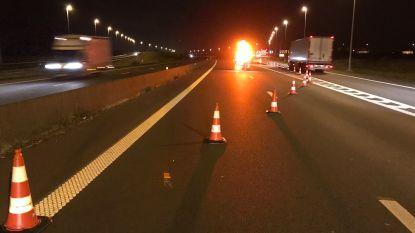 Actie gele hesjes: snelweg E40 tijdje volledig afgesloten in Adinkerke