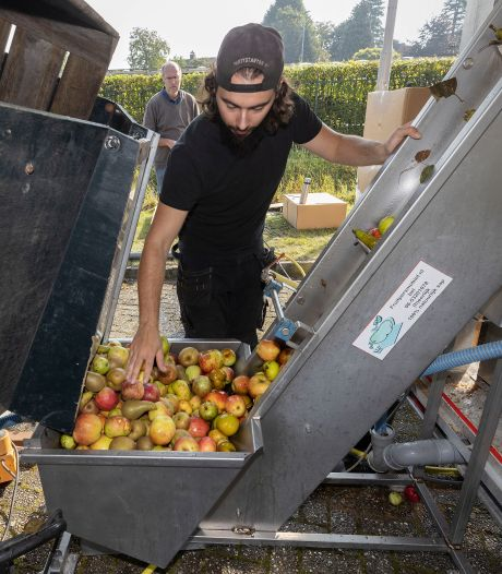 Kratten vol fruit voor sap, vers van de pers in Oirschot