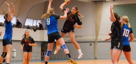 Sportclubs in Borne zien de bui al hangen; 'Klein Papendal' in het gedrang