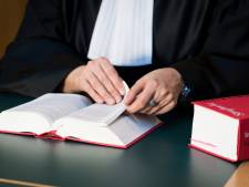 Celstraf voor man (58) die zijn moeder (83) thuis heeft  gedood: 'Brute daad'
