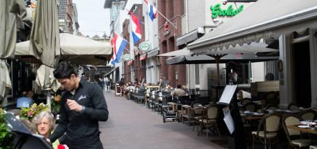 Aanhoudingen in Bossche binnenstad dankzij camera's: politie 'erg tevreden'