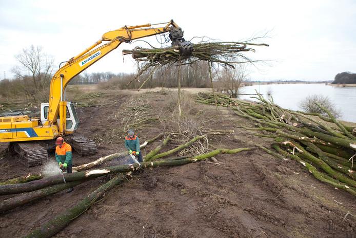 In het kader van 'Ruimte voor de Rivier' zijn onder andere bij Welsum/Veessen veel bomen gekapt.