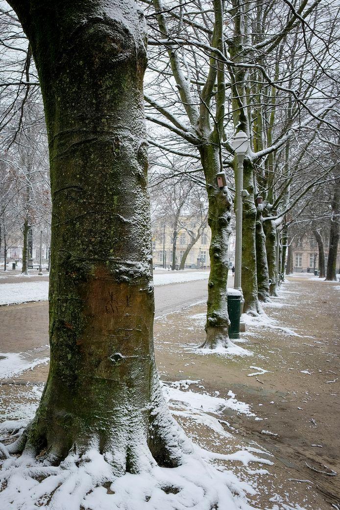 Warandepark in Brussel