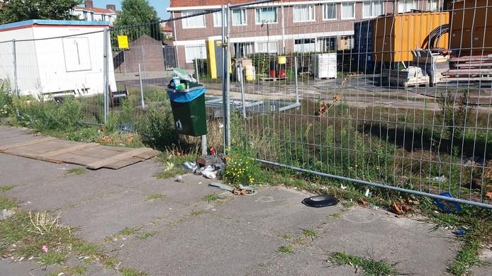 """Lezers stuurden foto's in van de vieze stad. Erno Elsinga: ,, Lumenplantsoen, Lange Nieuwstraat, vanmorgen. Oplossing? De gemeente moet dagelijks afvalbakken legen en een bewustwordingscampagne starten."""""""