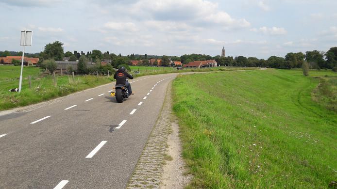 De Lekdijk bij Amerongen.