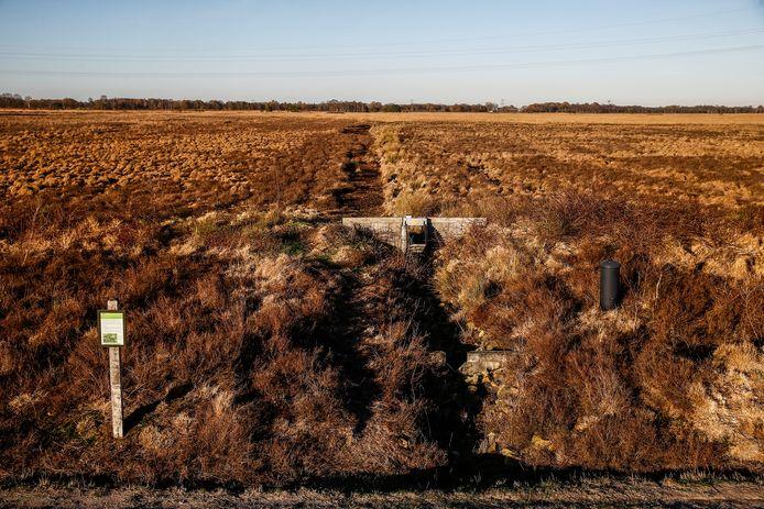 Bij een recent onderzoek van de Stichting Agrifacts werd nauwelijks hoogveen aangetroffen in het beschermde natuurgebied het Wierdense Veld.