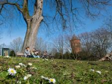 Wilhelminapark krijgt mobiele horeca