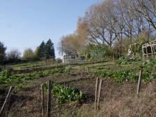 Une lueur d'espoir pour les 77 locataires des potagers du Thier-à-Liège