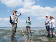 Nieuwe gidsen laten Zeeuwse natuur spreken