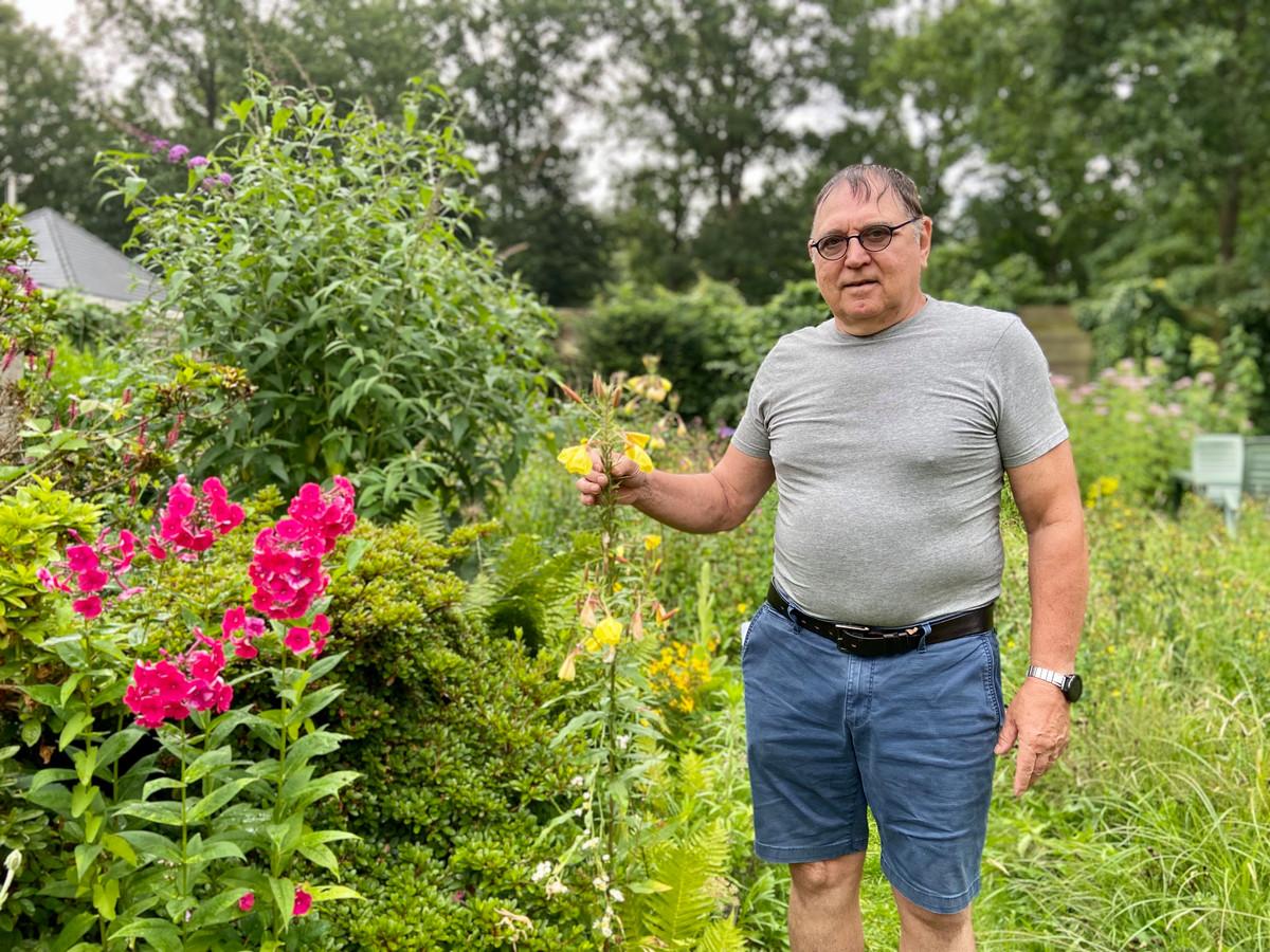 De vlindervriendelijkste tuin ligt in Zoersel: Ludo Vorsselmans spotte de meeste soorten tijdens de Grote Vlindertelling van Natuurpunt