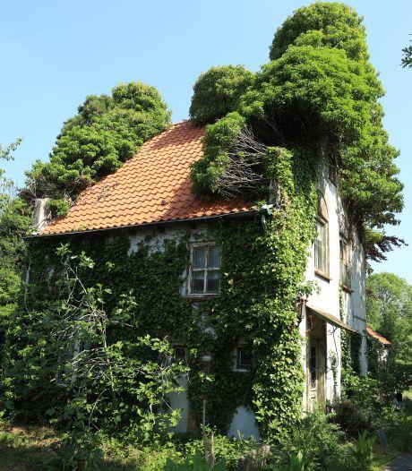Huis van Theo Aernoudts gaat op in de natuur: 'Snoeien? Niet te veel, het moet mystiek blijven'