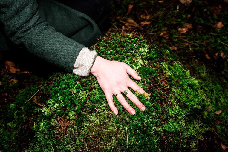 Op uitnodiging van bosbadbegeleider Eefje Ludwig ruiken we aan blaadjes, strijken we met onze hand door een beek, gaan we af of wat ons aanspreekt.  Beeld Jan Mulders